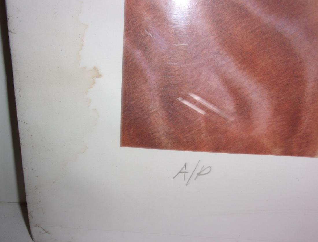 artist proof horse lithograph signed and numbered - 4
