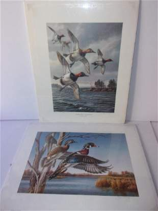 2 duck lithographs by James Meger