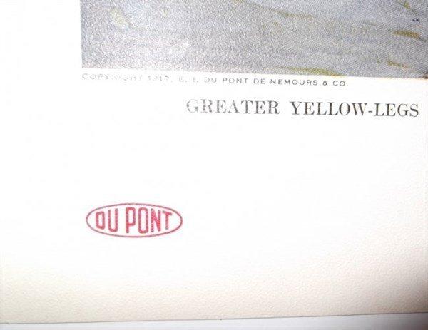 DuPont Shotgun Powder Advertisment - 8