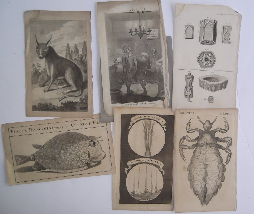 Collection of 18 antique book plate engravings - 2