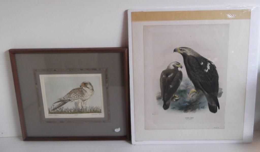 2 piece bird lithograph & print