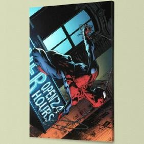 """""""The Amazing Spider-Man #592"""" LIMITED EDITION Giclee on"""