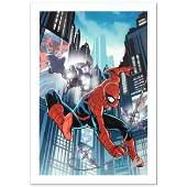 Timestorm 20092099 SpiderMan OneShot 1 Limited