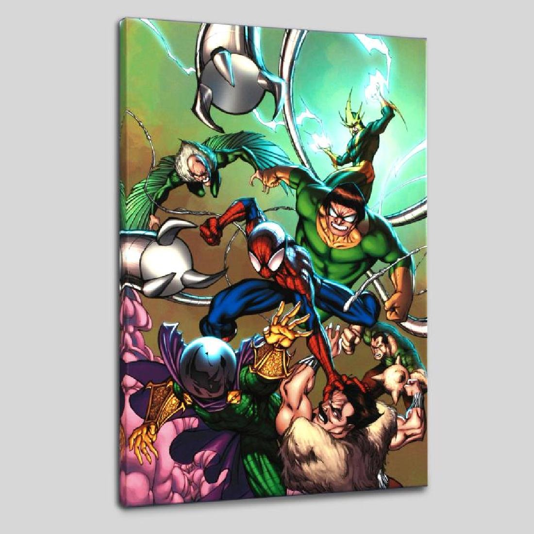 """Marvel Adventures: Spider-Man #17"" Limited Edition"