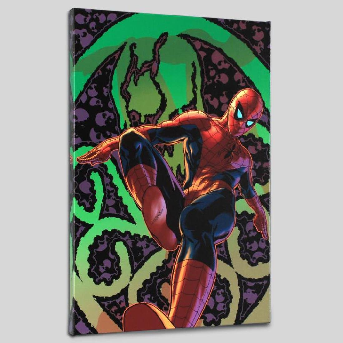 """Amazing Spider-Man #524"" Limited Edition Giclee on"