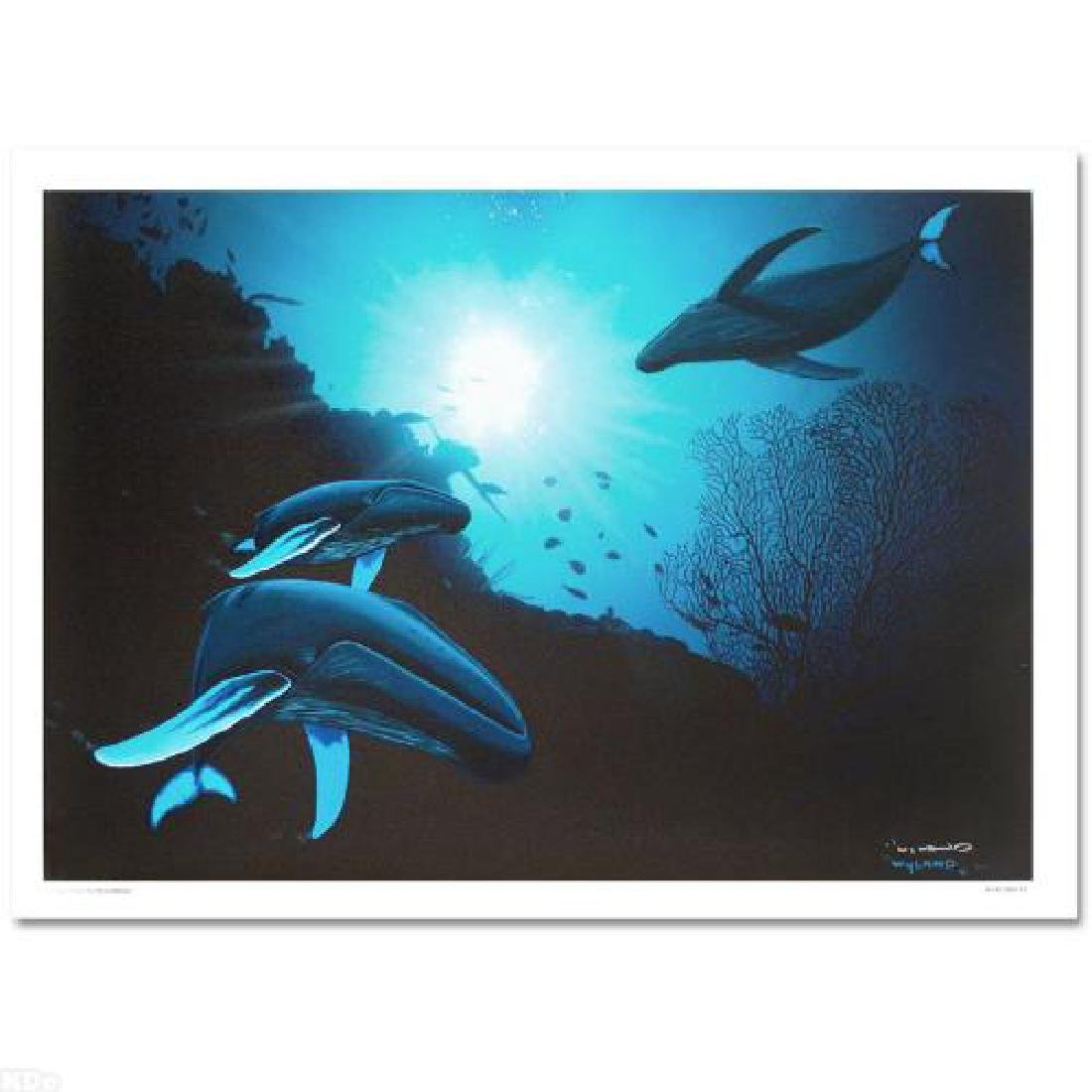 """Whale Vision"" LIMITED EDITION Giclee on Canvas (42"" x"