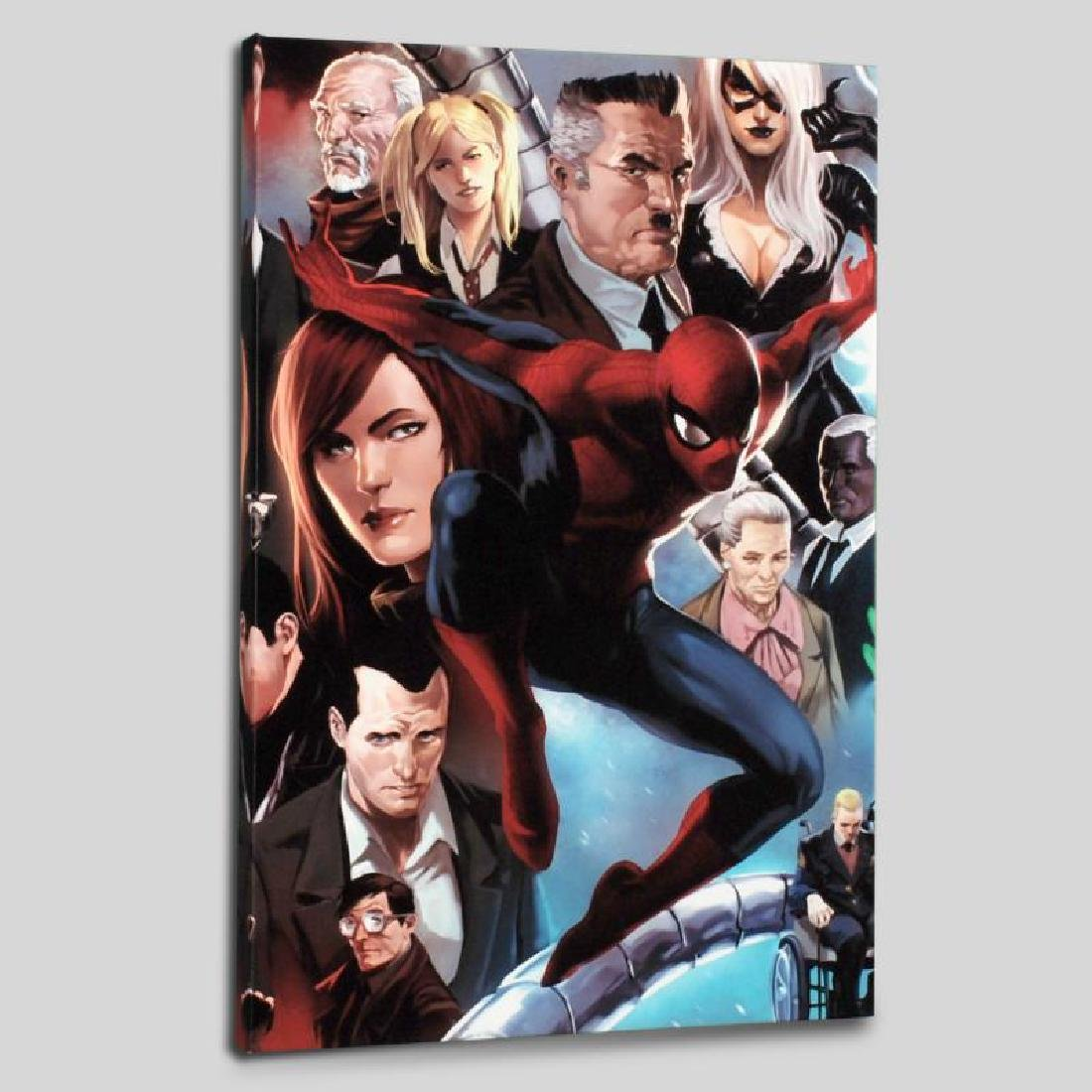 """""""Amazing Spider-Man #645"""" Limited Edition Giclee on"""