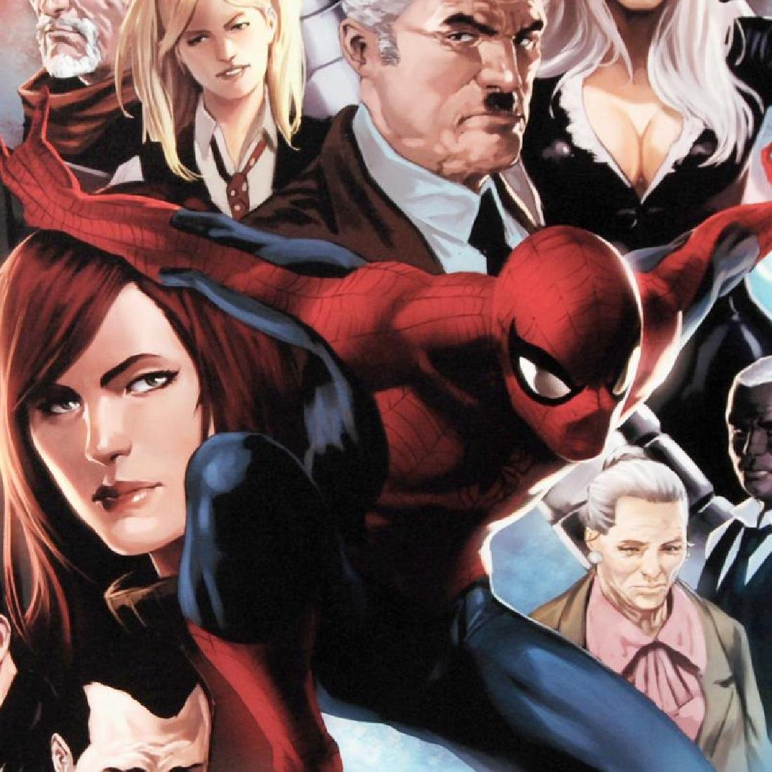 """""""Amazing Spider-Man #645"""" Limited Edition Giclee on - 5"""
