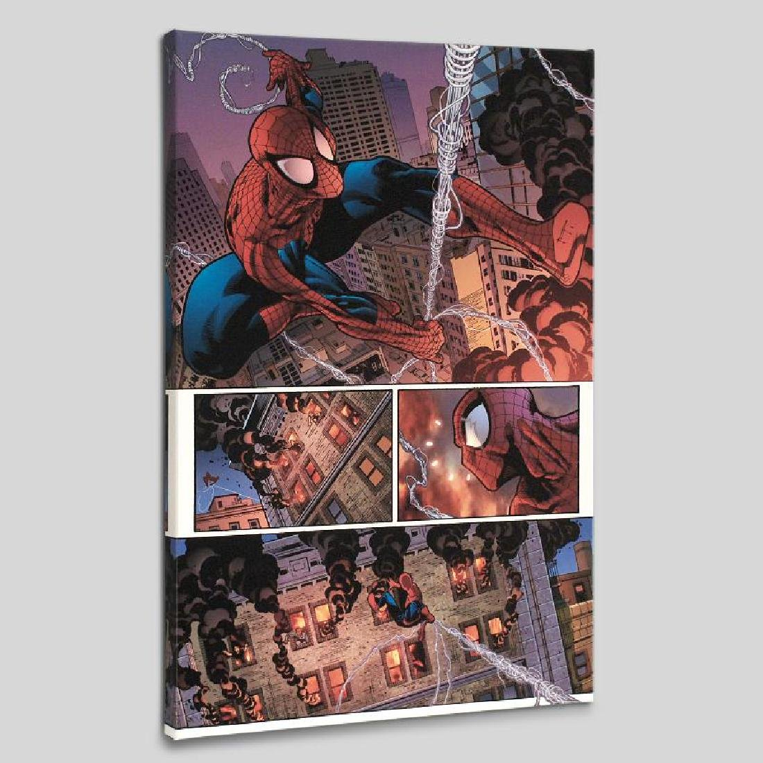 """""""The Amazing Spider-Man #596"""" LIMITED EDITION Giclee on"""