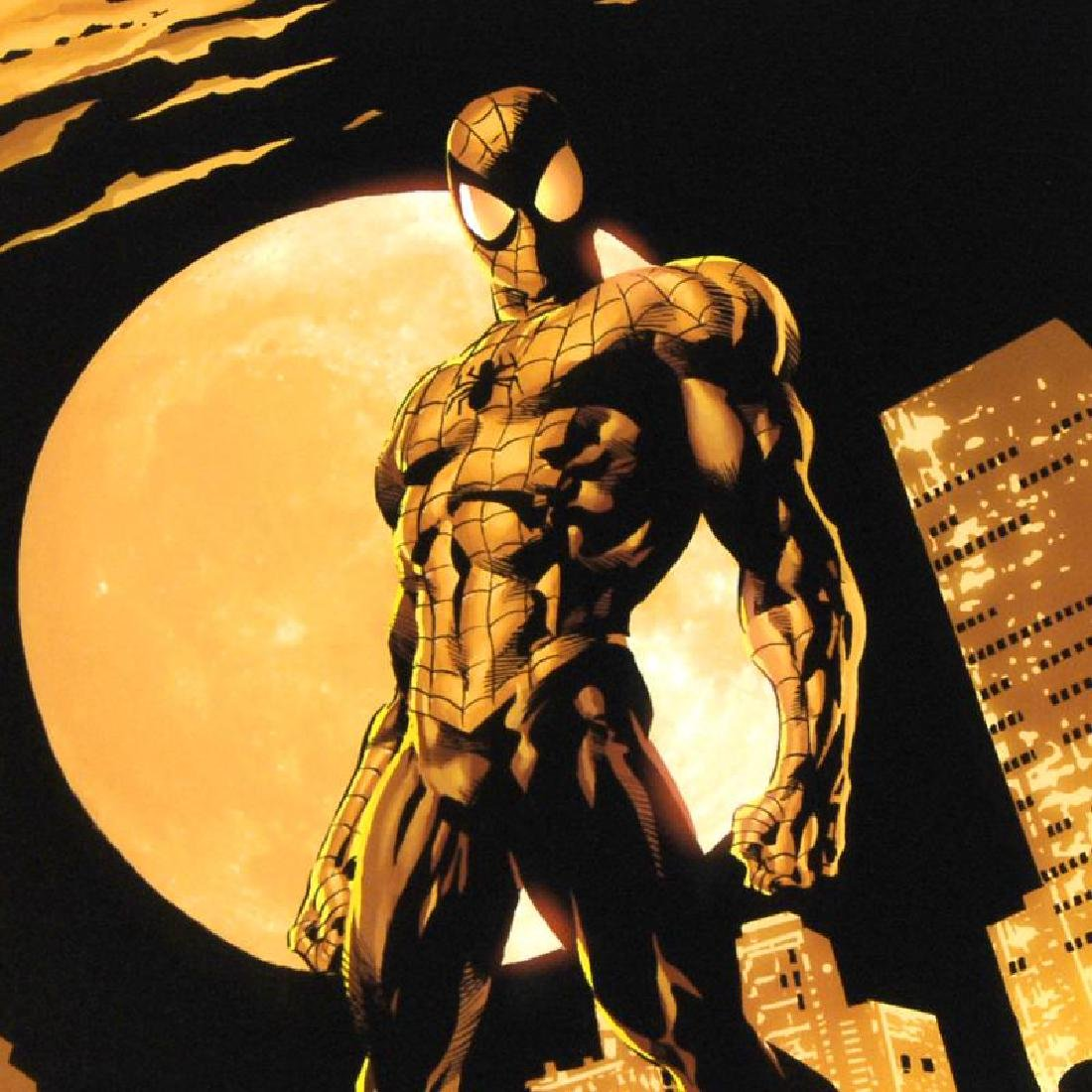 """""""Amazing Spider-Man #528"""" Limited Edition Giclee on - 4"""