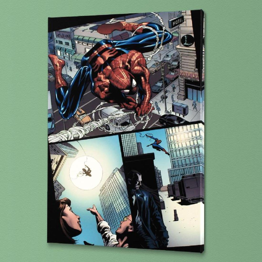 """Amazing Spider-Man #526"" Limited Edition Giclee on"