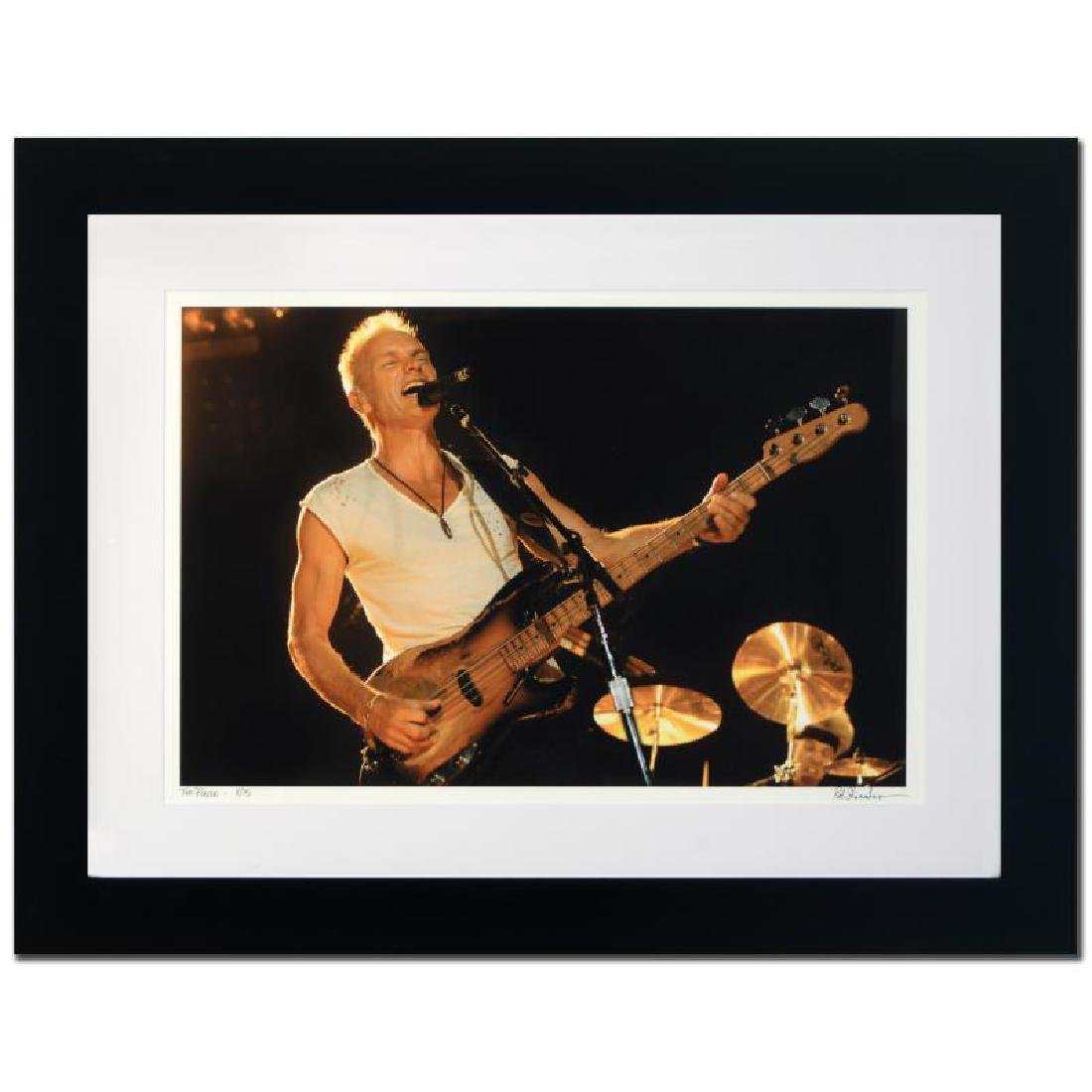 """Sting"" Limited Edition Giclee by Rob Shanahan"