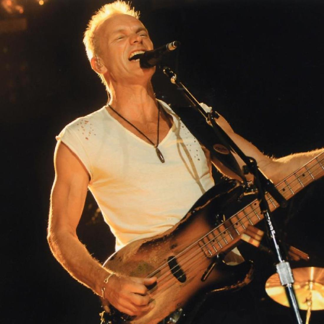 """""""Sting"""" Limited Edition Giclee by Rob Shanahan - 4"""