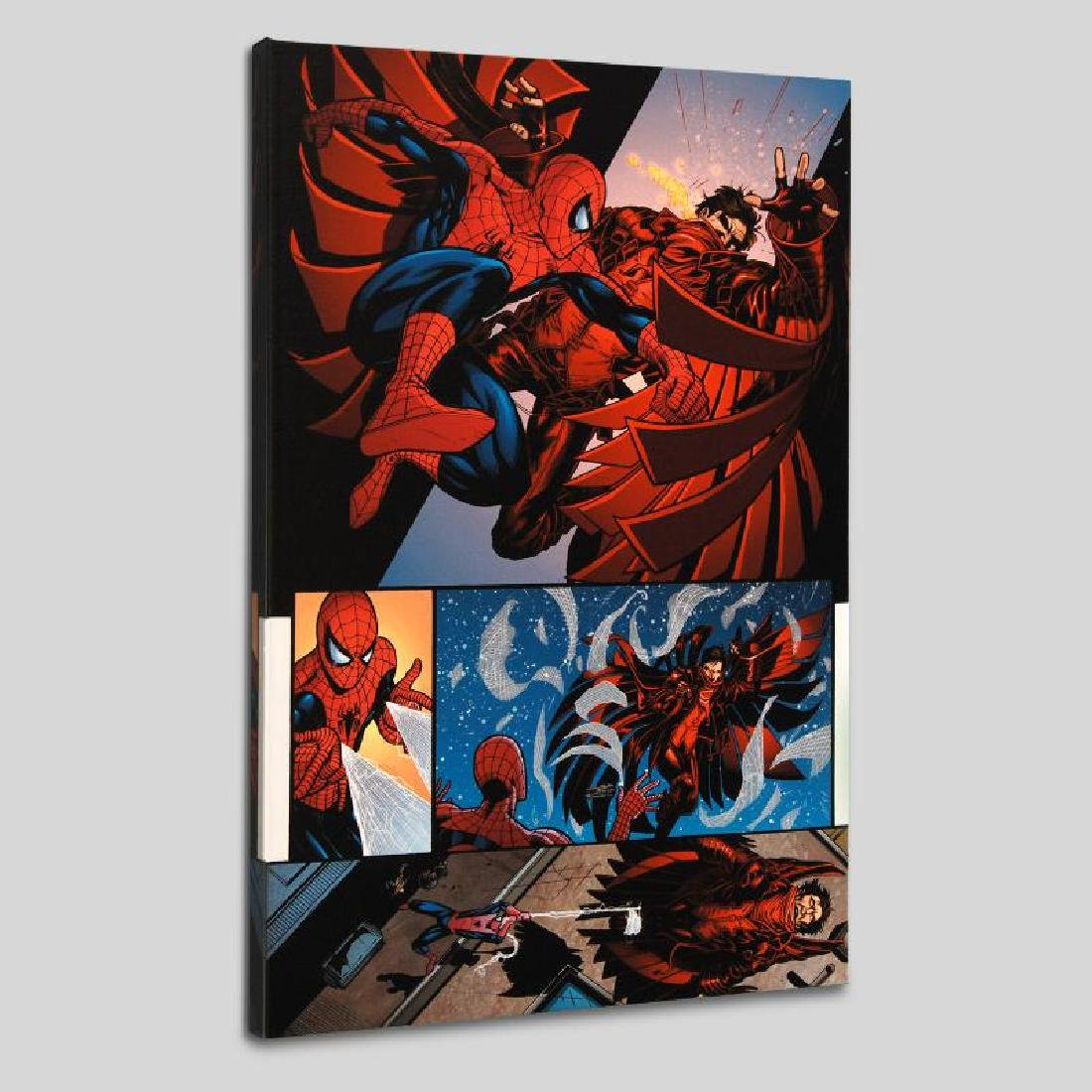 """""""The Amazing Spider-Man #594"""" LIMITED EDITION Giclee on"""