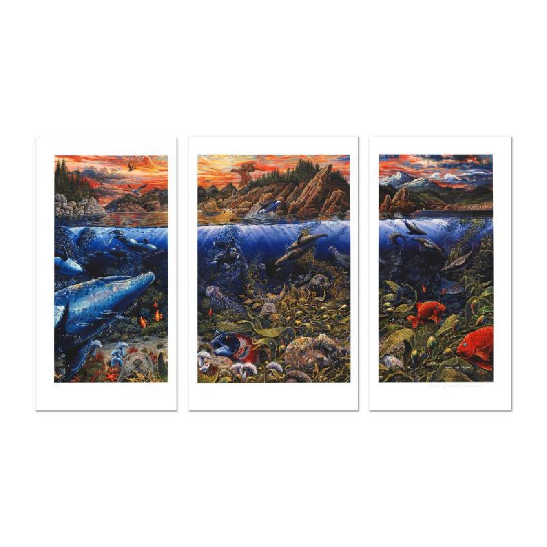 Underwater World Limited Edition Mixed Media Triptych - 3