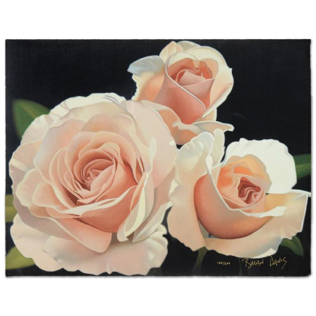 """Three French Lace Roses"" Limited Edition Giclee by"