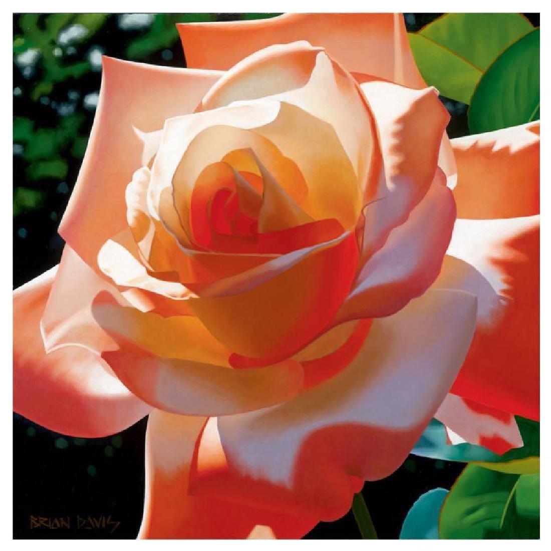 """Brian Davis - """"Orange Radiance"""" Limited Edition Giclee"""