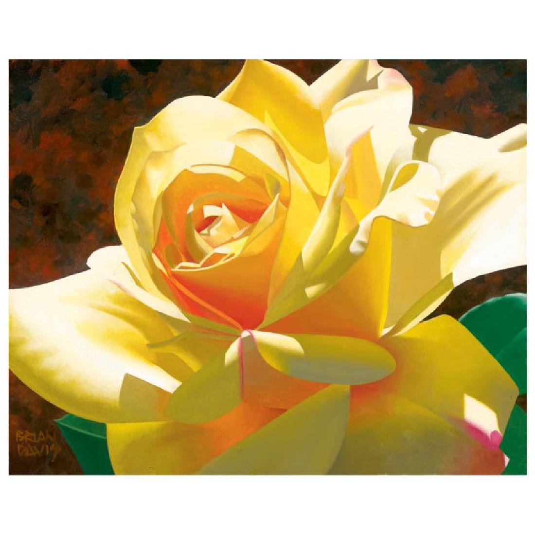 "Brian Davis - ""Golden Solo Rose"" Limited Edition Giclee"