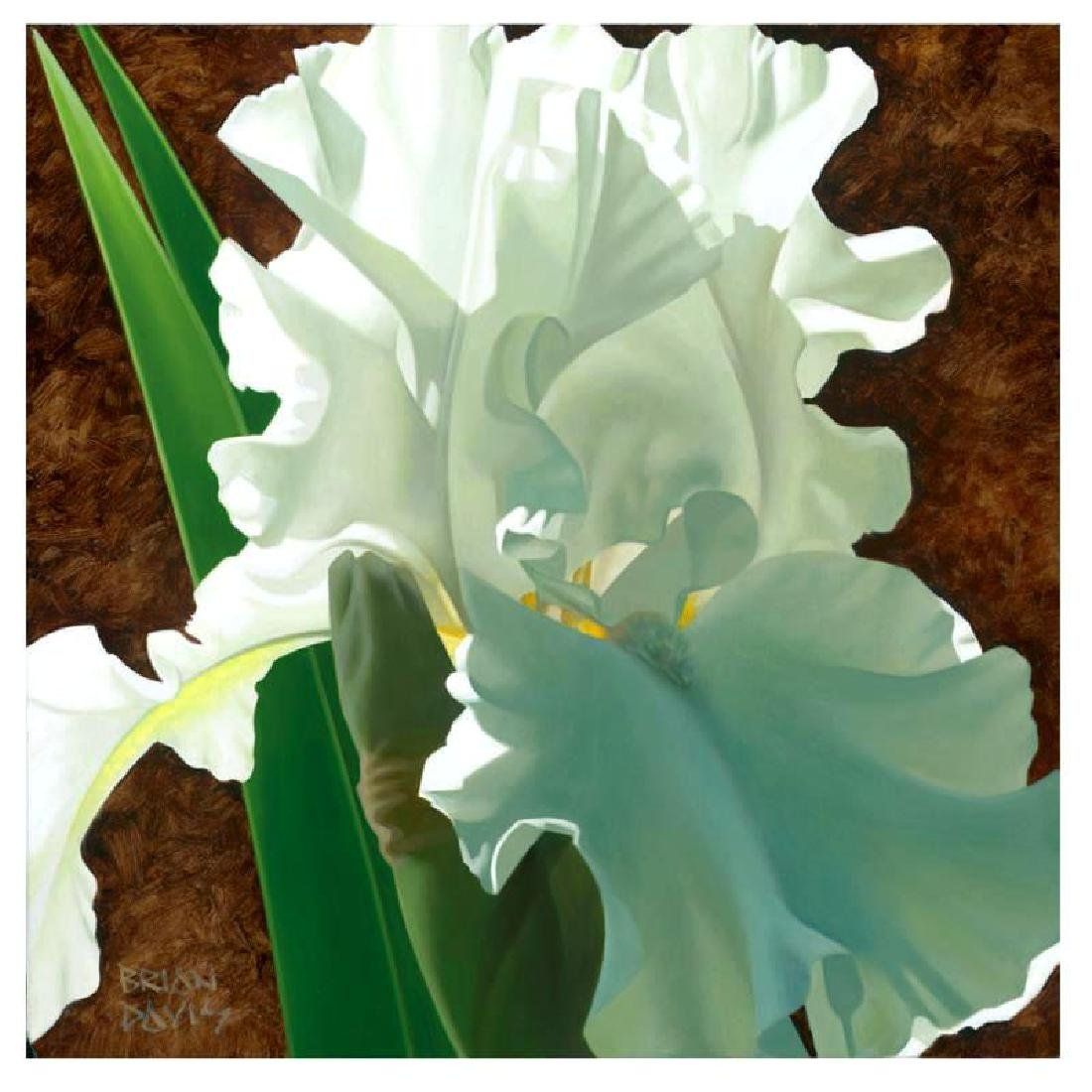 "Brian Davis - ""Solitary White Iris"" Limited Edition"