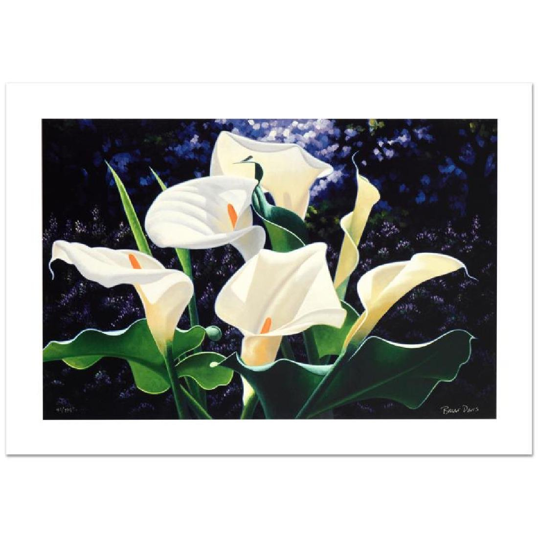 """Morning Calla"" Limited Edition Giclee by Brian Davis"