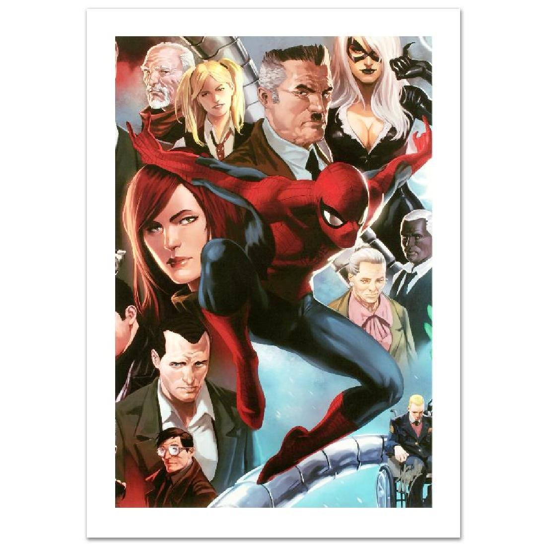 """Amazing Spider-Man #645"" Limited Edition Giclee on"