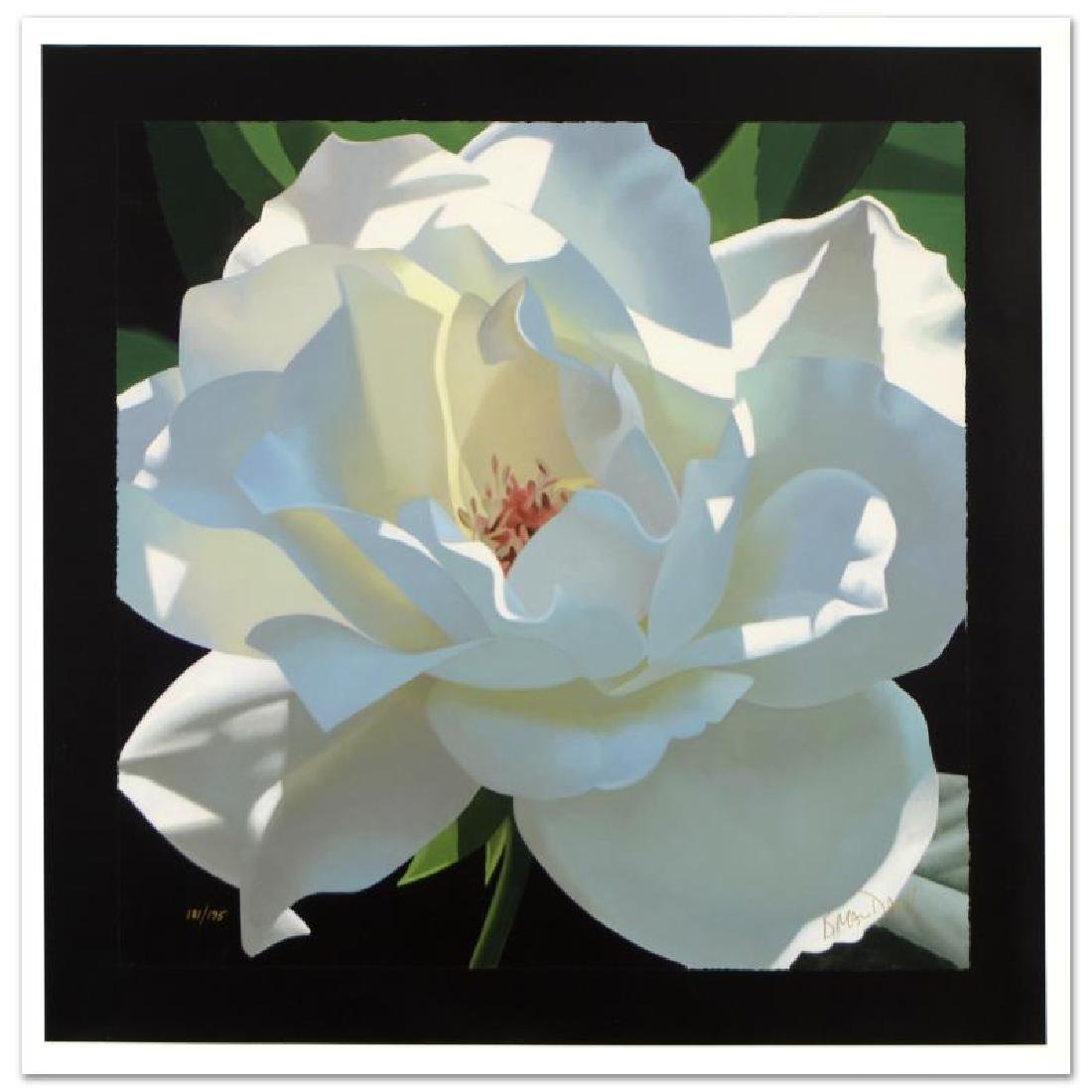 """Rose in the Shadows"" Limited Edition Giclee on Canvas"