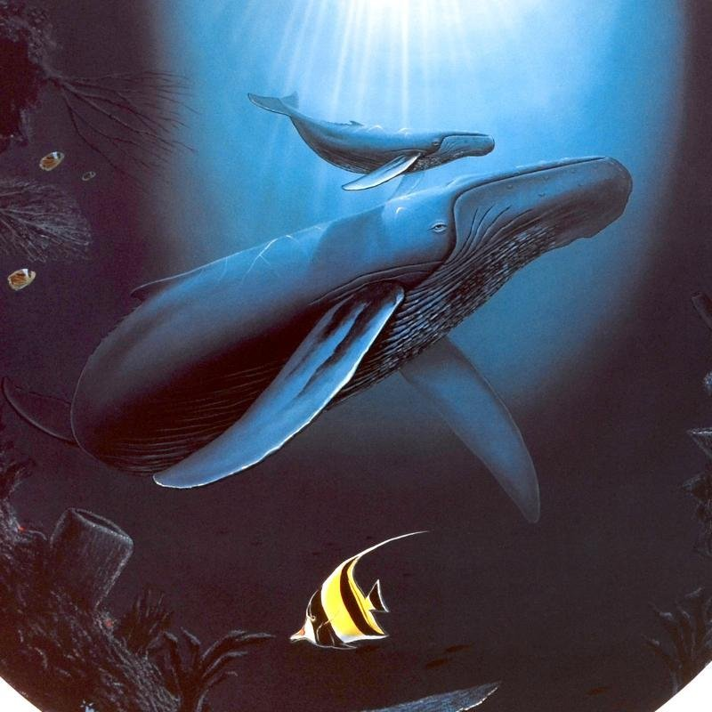 """""""Innocent Age / Dolphin Serenity"""" Limited Edition - 2"""