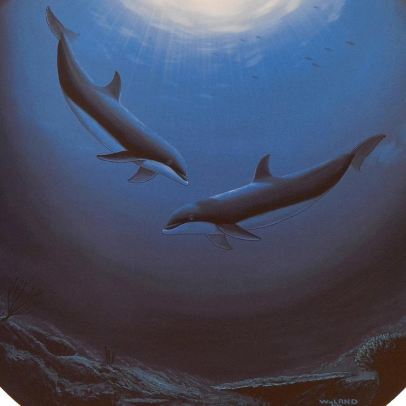 """""""Innocent Age / Dolphin Serenity"""" Limited Edition - 3"""