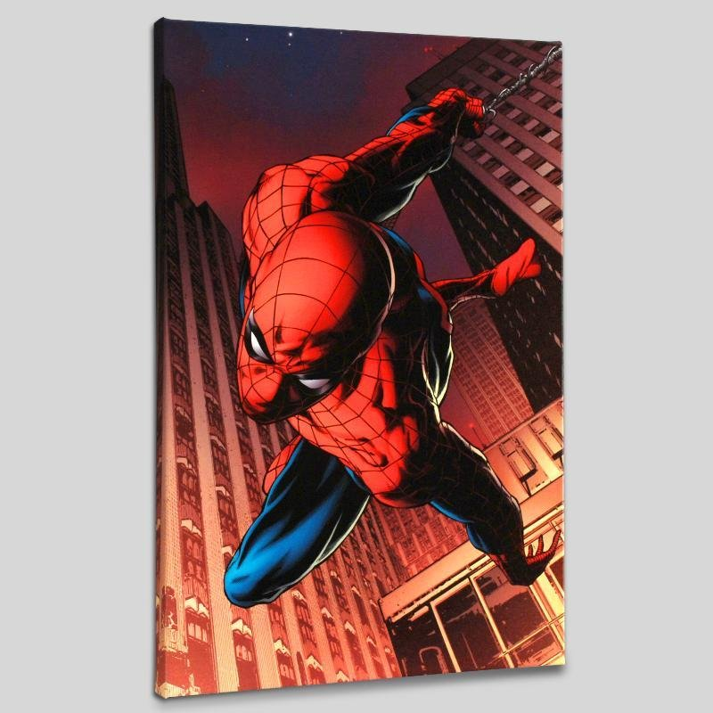 """""""Amazing Spider-Man #641"""" LIMITED EDITION Giclee on"""