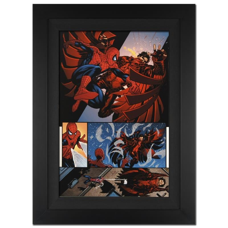 """""""The Amazing Spider-Man #594"""" Extremely LIMITED EDITION"""