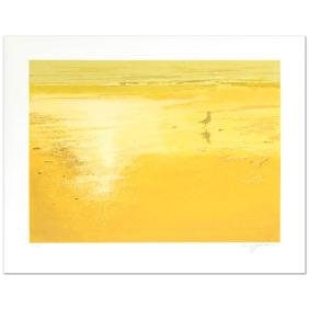 """""""The Seagull"""" Limited Edition Serigraph by Harry"""