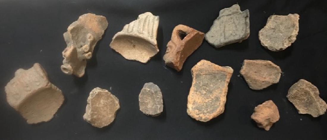Pre-Columbian Taino Pottery Artifacts (12) - 4