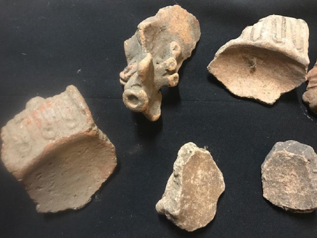 Pre-Columbian Taino Pottery Artifacts (12) - 5