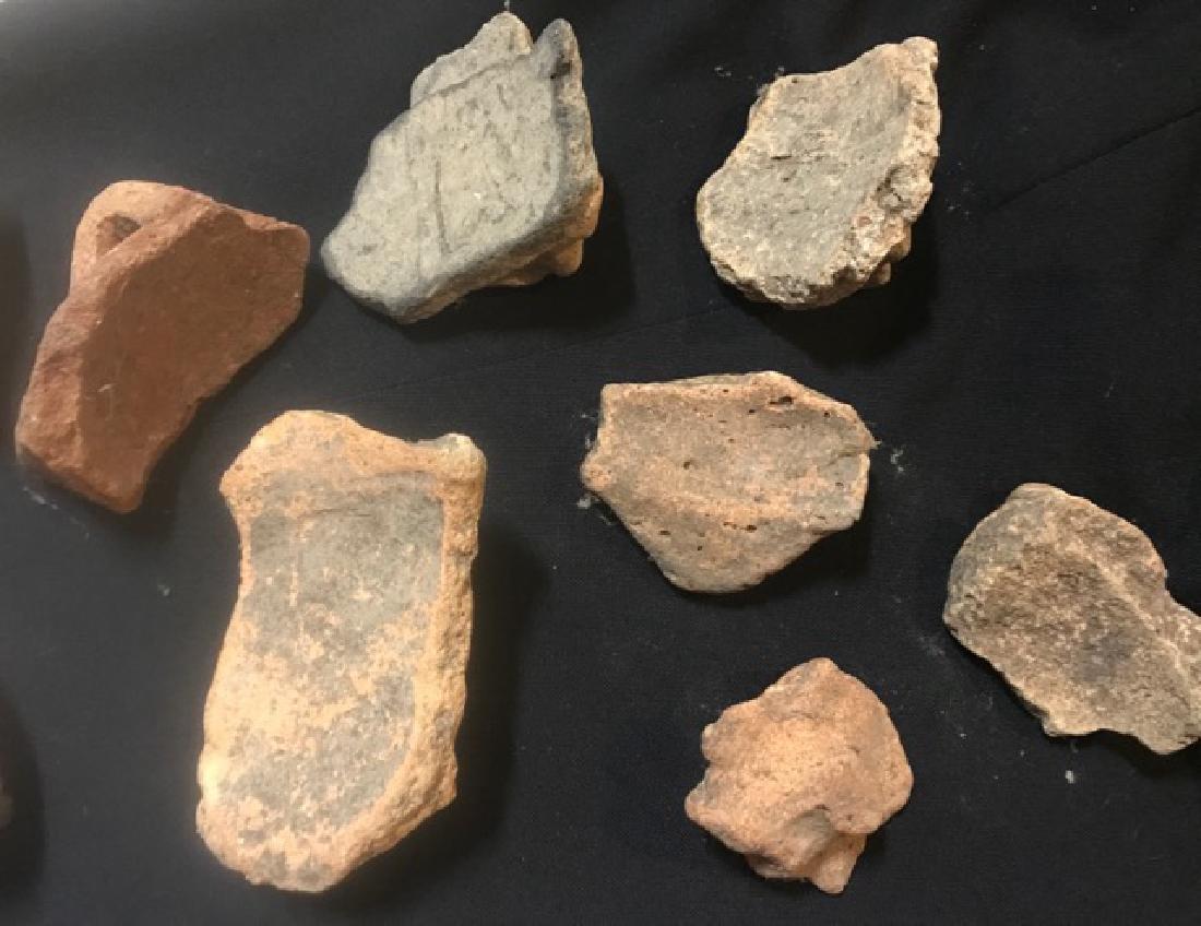 Pre-Columbian Taino Pottery Artifacts (12) - 6