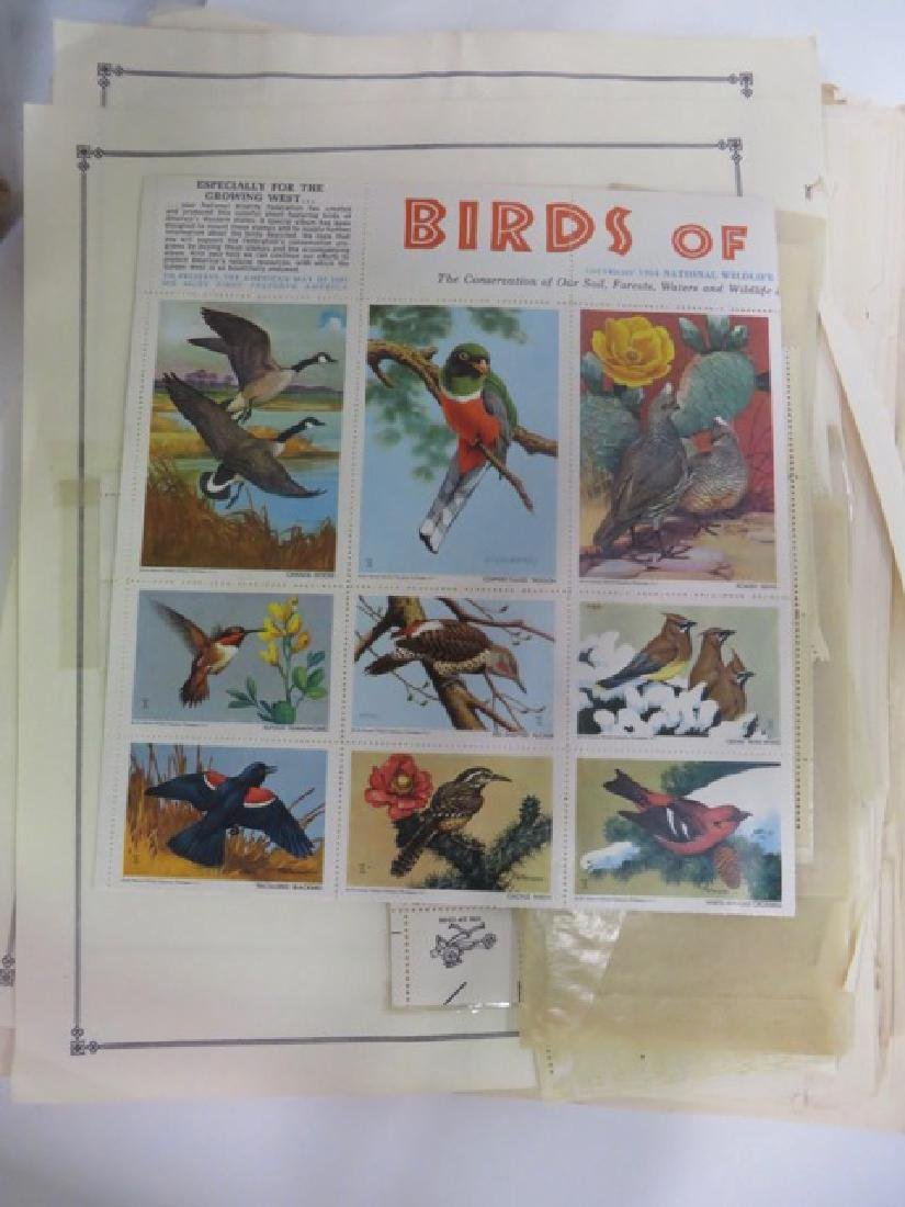 Collector's Lot of Stamps (hundreds) - 2