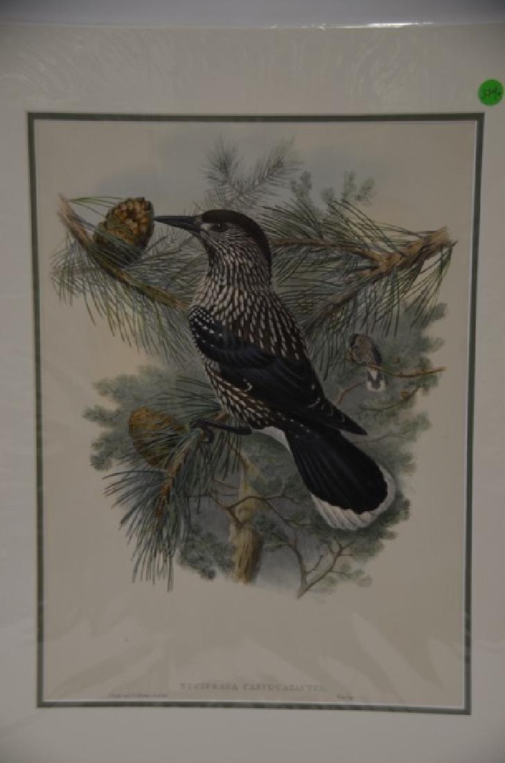 J. Gould Richter Lithograph Plate 374