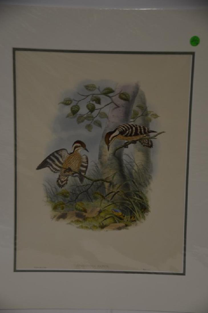 W. Hart Hand Colored Lithograph #391