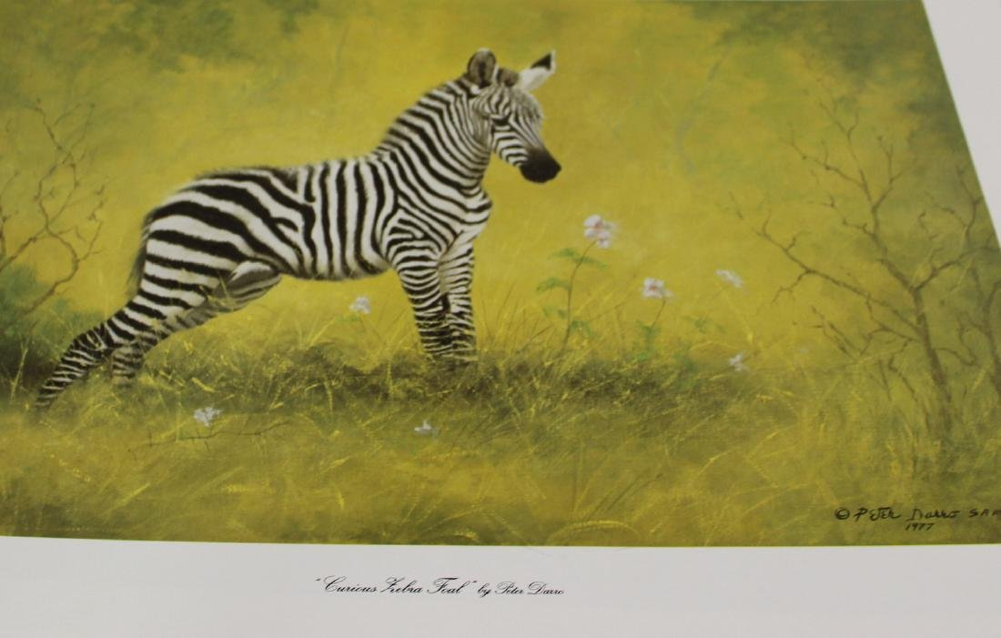 Peter Darro. African & Domestic Animal Prints.  (16)