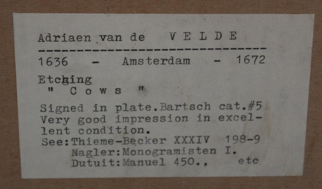 Adriaen Van de Velde. 17th C. Engraving.Cows - 4