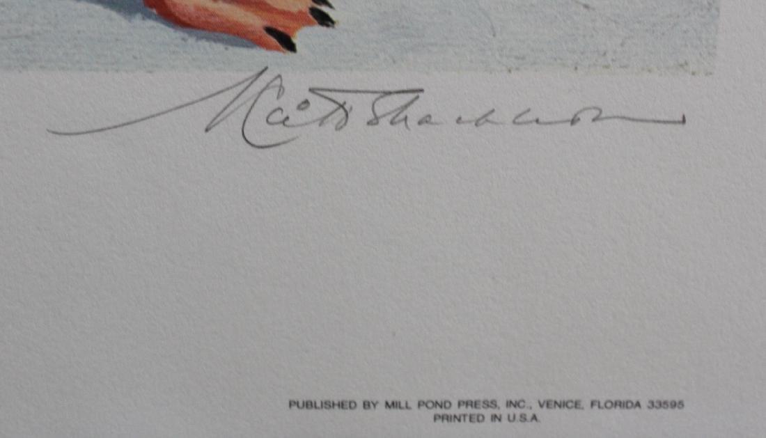 K. Shackleton. Ltd. Print. - 3