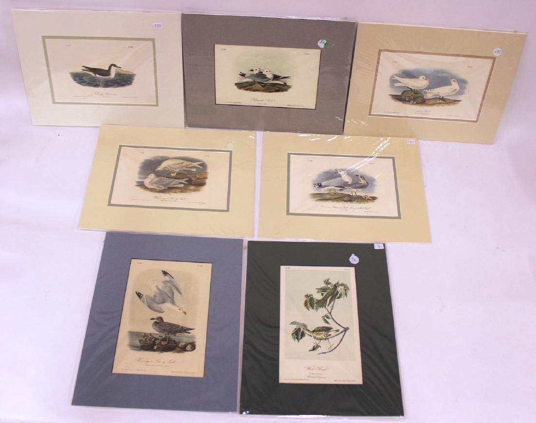 J. J. Audubon Original Aquatints (7)