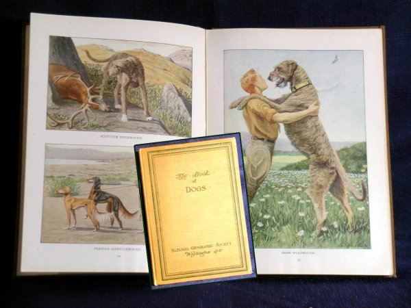 1: The Book of Dogs, National Geographic