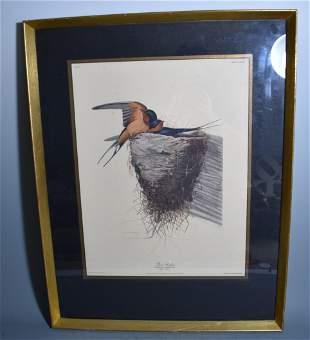 Audubon Print Barn Swallow