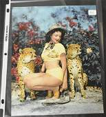 Bunny Yeager Photo Model In Jungle Land