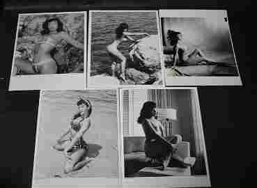 (5) Photos Bettie Page