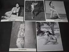 Mixed Model Photos (5)