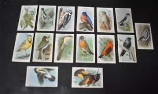 Useful Birds of America Cards (15)