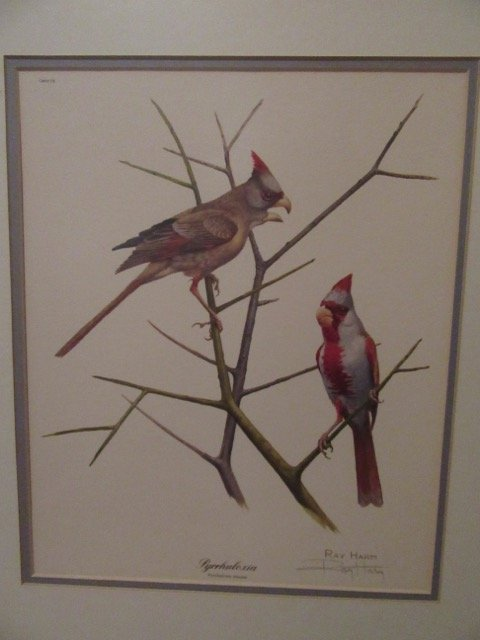 Ray Harm Bird Lithograph Signed - 3