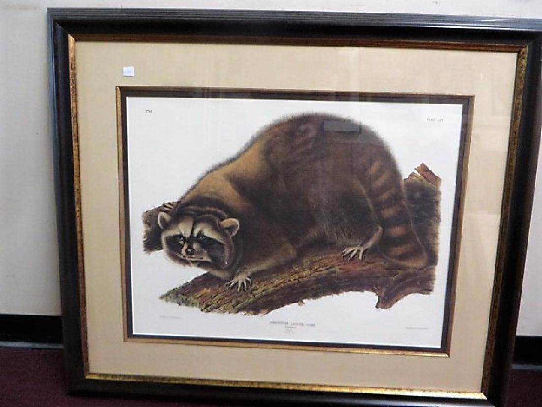 Racoon. Southart-Parkway Edition. C. 1980's