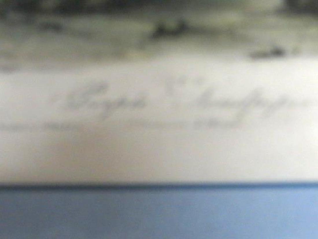 J.J. Audubon. Octavo. Purple Sandpiper No.330 - 2